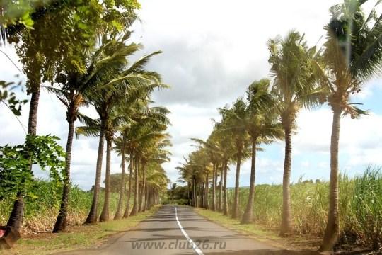 Путешествуя по Маврикию