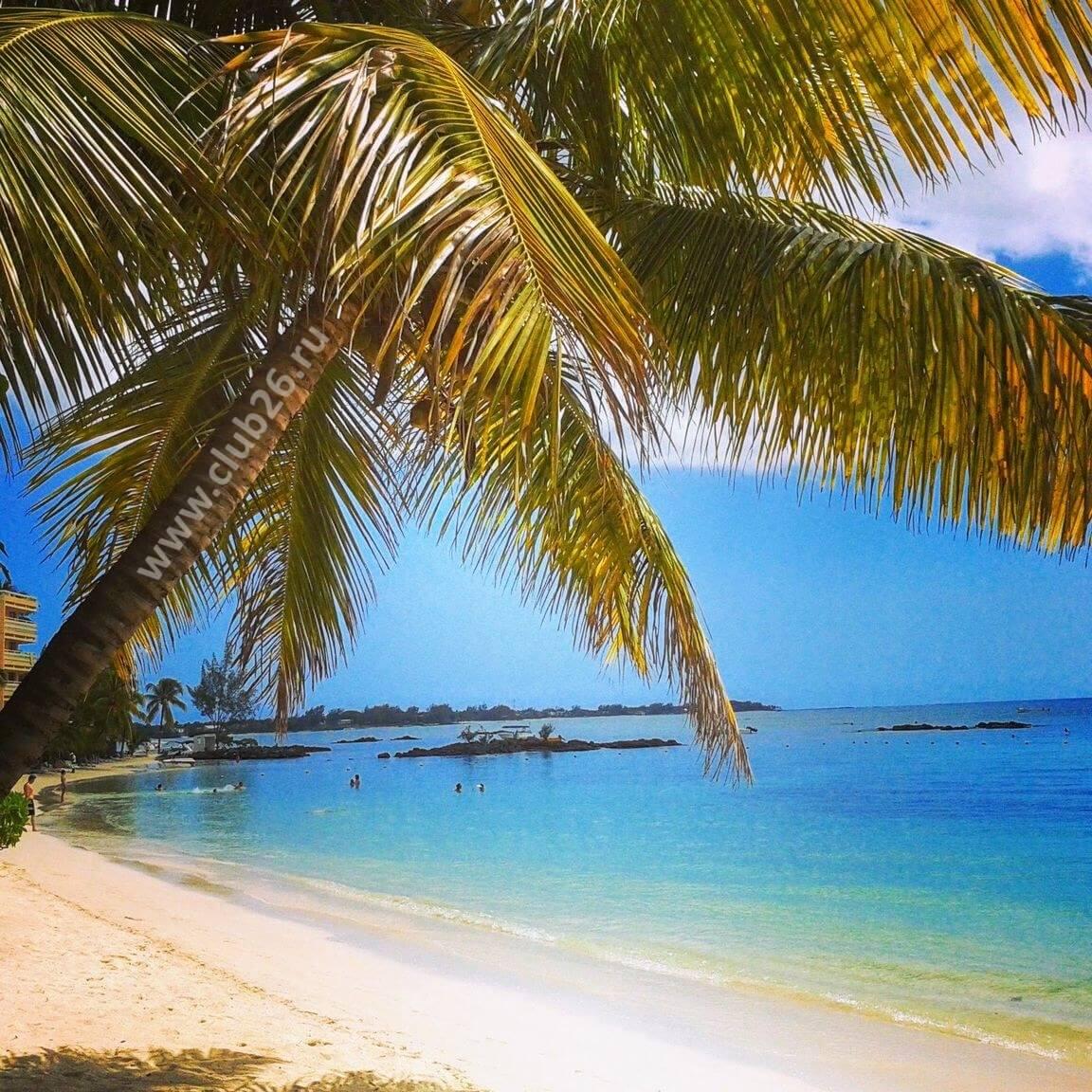 Пляж на о.Маврикий