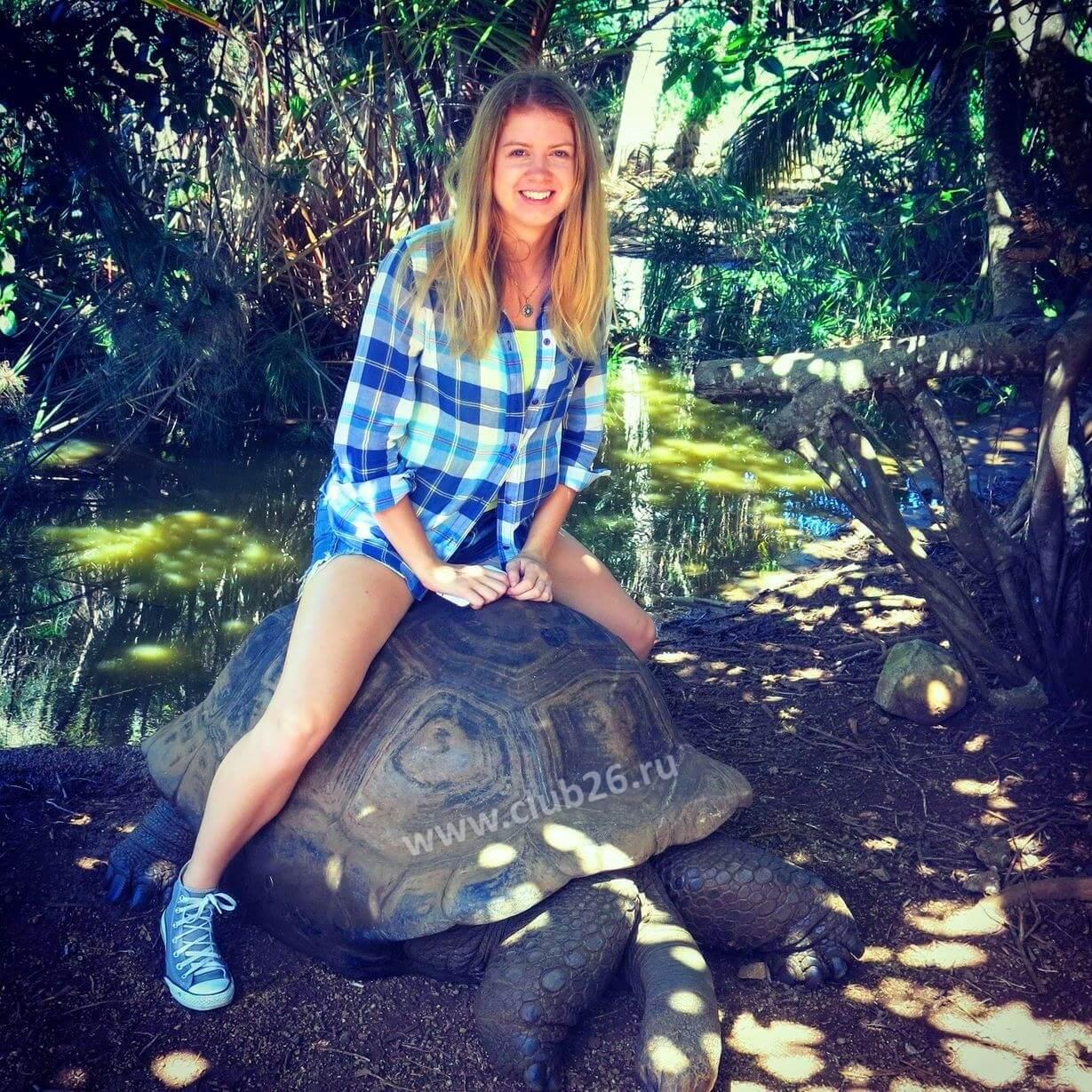 Верхом на черепахе